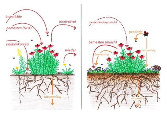 eco ecologisch vs conventioneel tuinieren1