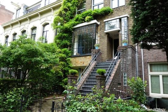 groene en toch betegelde tuin
