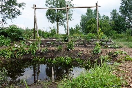 permacultuur tuin mikkelhorst vijver