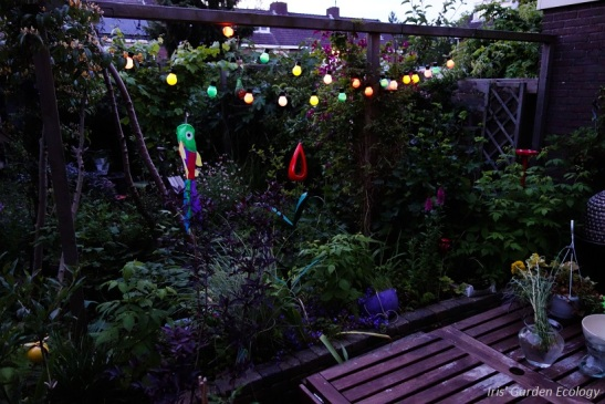 Donkere tuin