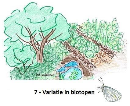 Variatie in biotopen: zonnige bloemen, bloemrijk grasland, moestuinen, struikgewassen, bossen, modderpoelen, vijvers, kale grond en mulch...