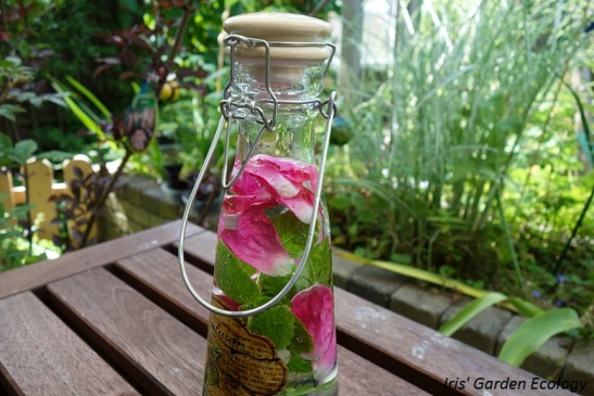 eetbare-bloemen-water-drinken
