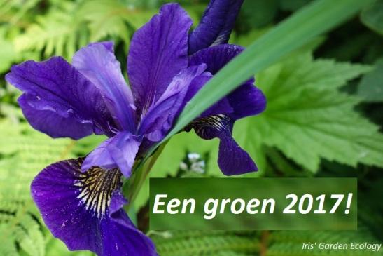 een-groen-2017-iris-garden-ecology-iris