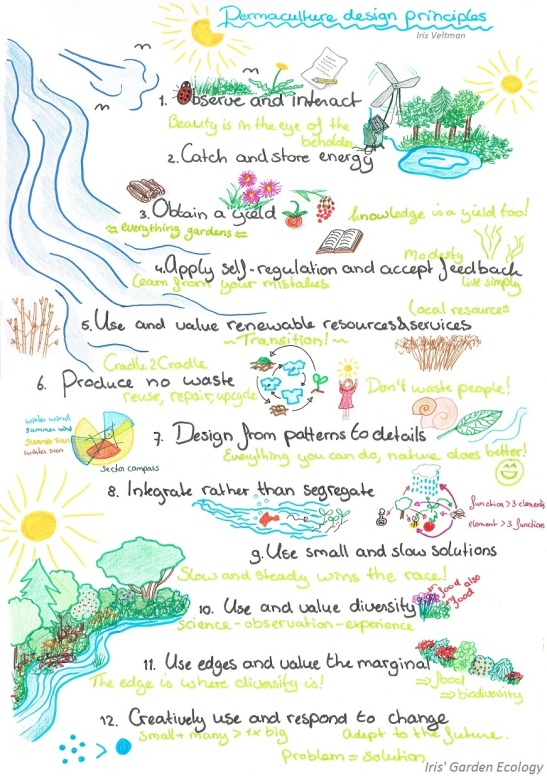 12-permaculture-design-principles-permacultuur-ontwerp-principes