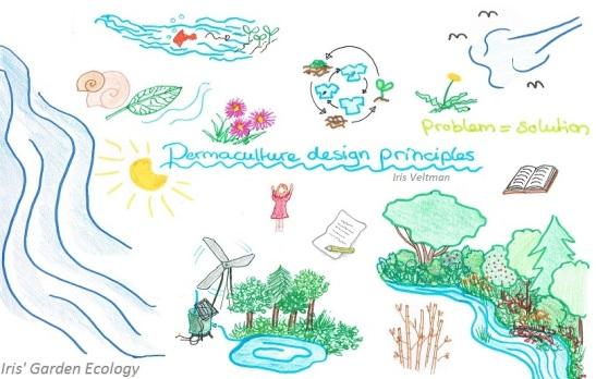 permacultuur-ontwerp-principes