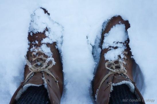 schoenen-in-de-sneeuw