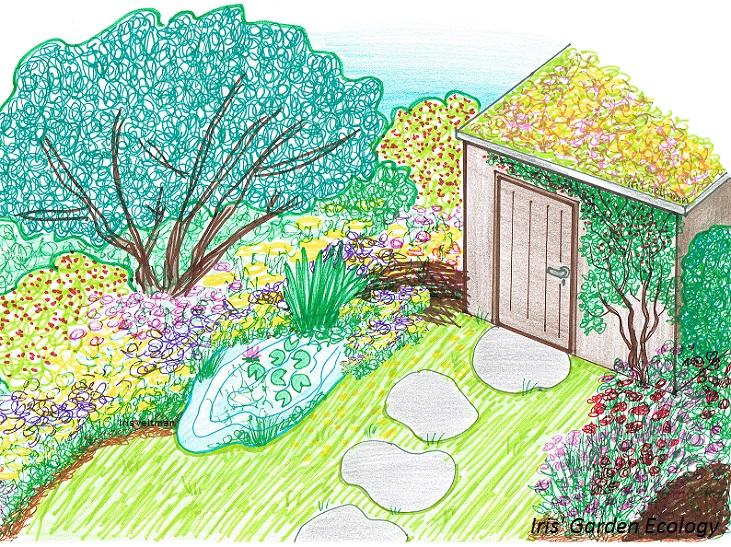 Tuin Afzetten Kat : Is jouw tuin een hotspot voor vogels iris garden ecology