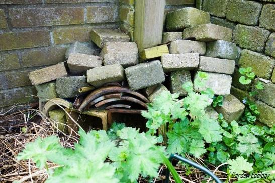 Bakstenen Muur Tuin : 16 ideeën voor hergebruik van tuintegels en stenen iris garden