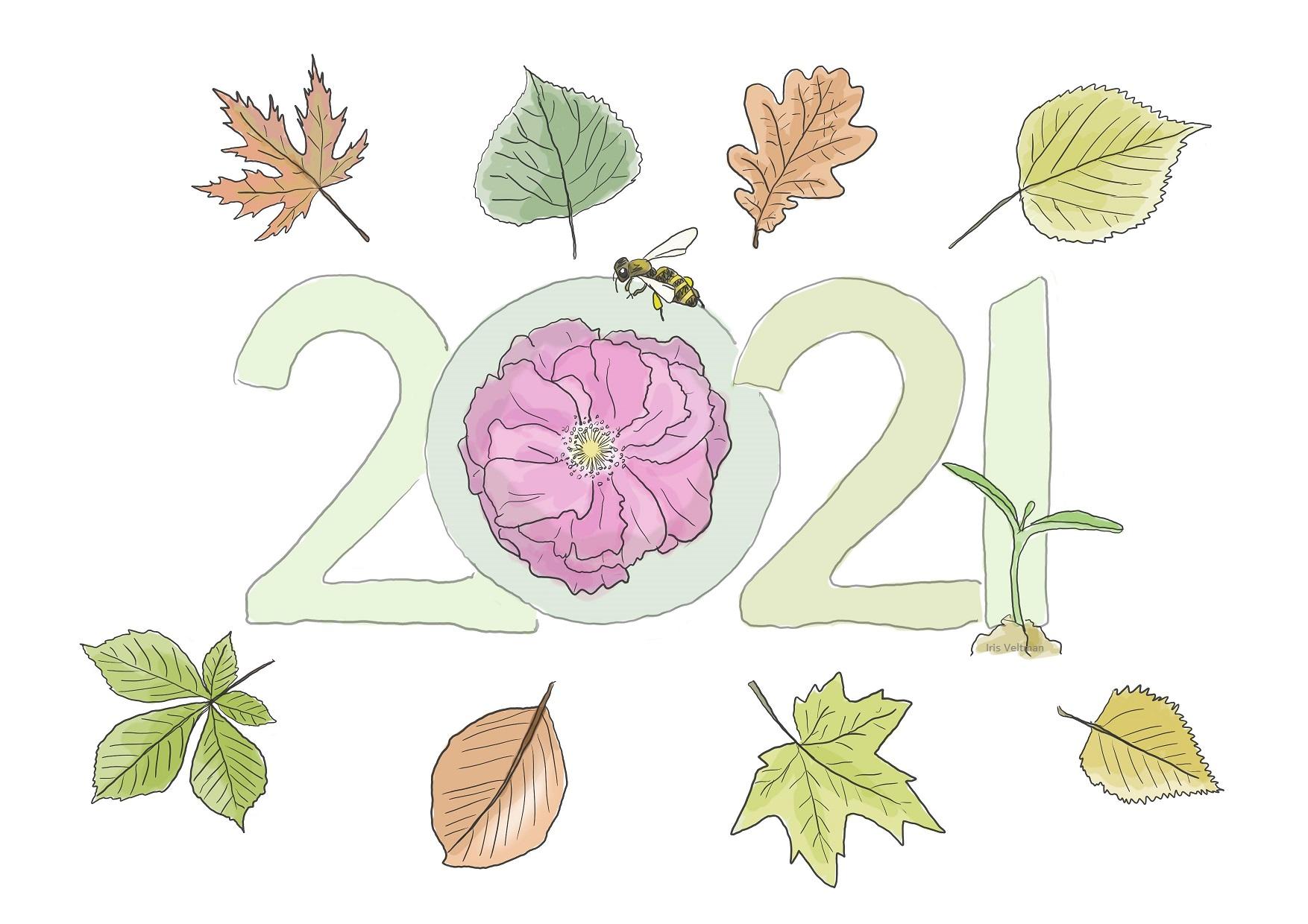 Nieuwjaarsbericht voor alle lezers